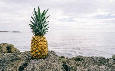 De Branding van de ananas